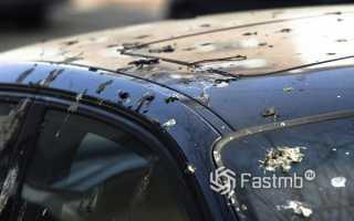 Как убрать птичий помёт с кузова автомобиля?
