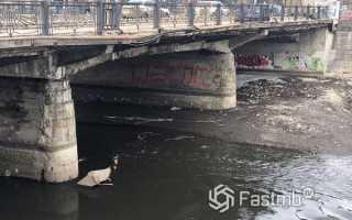 Насколько безопасны автомобильные мосты в Украине?