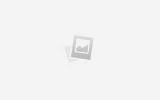 Автомобили DeLorean в виде лимузина, монстер-трака, кабриолета